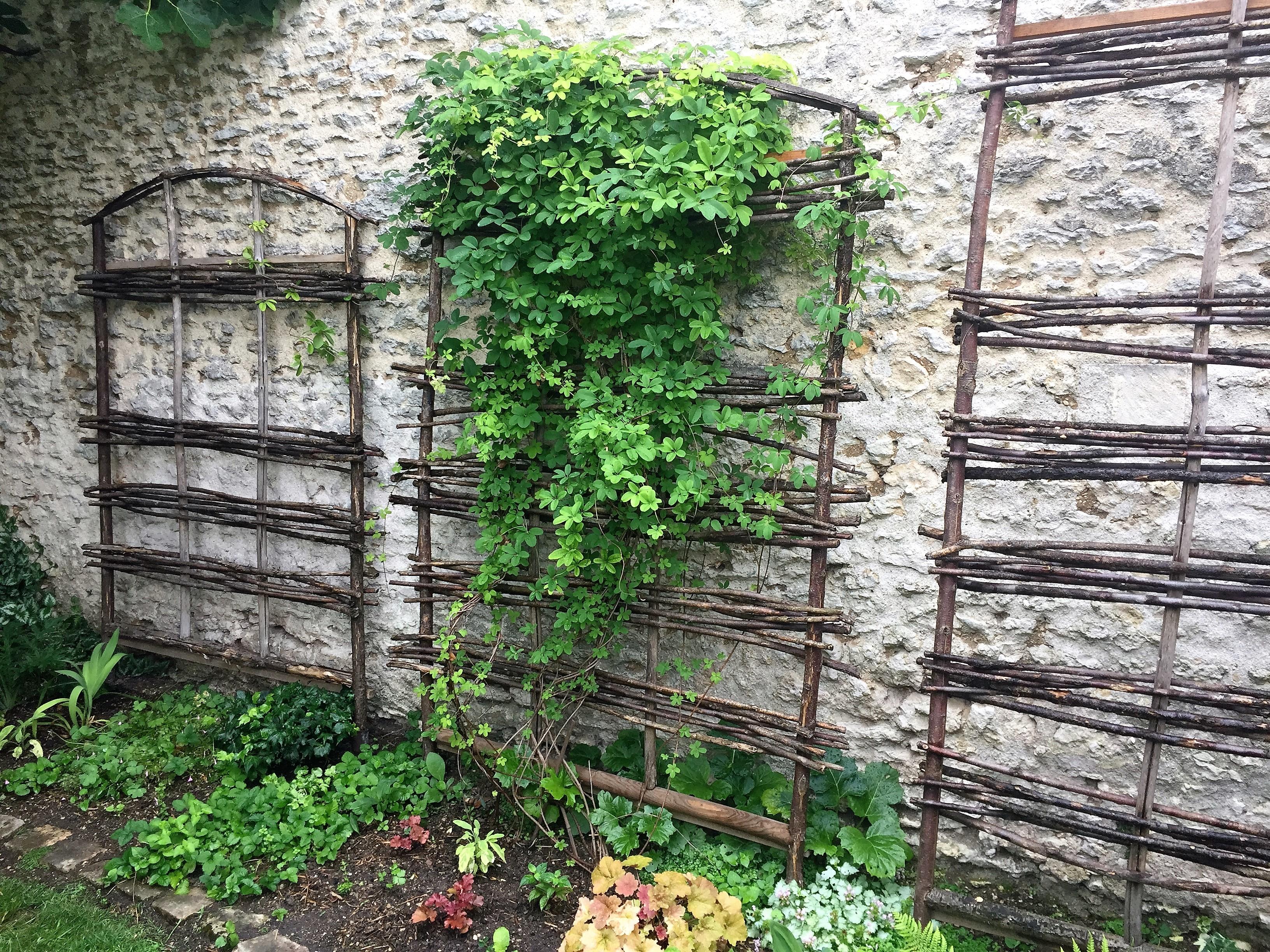livingincognac 2017 jardin
