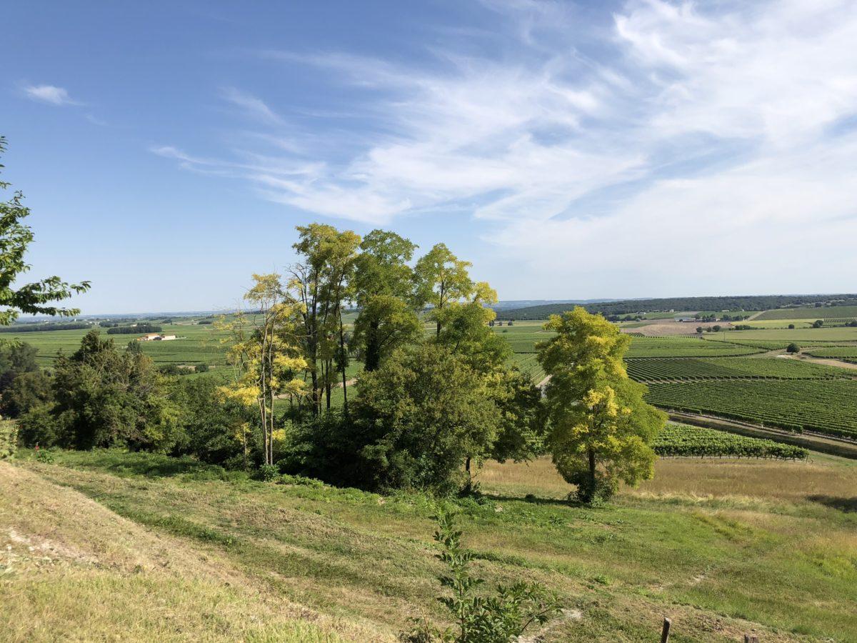 livingincognac château de bouteville