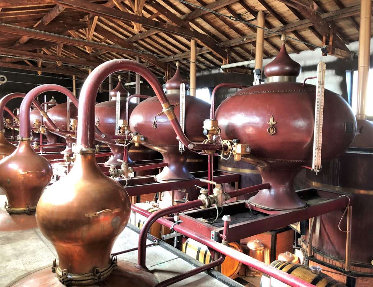 living-in-cognac 2018 Distillation