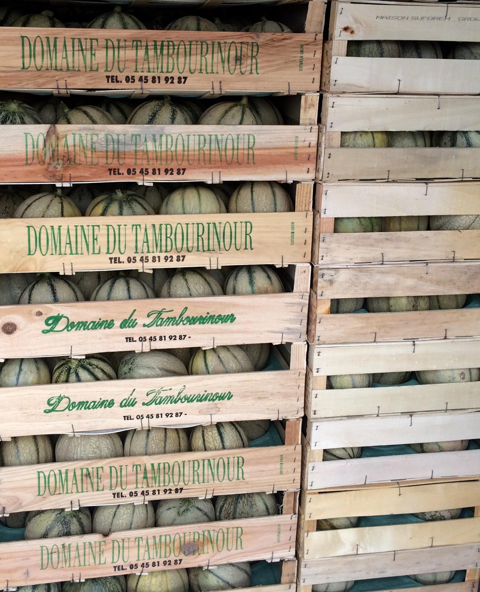 livingincognac-melon-tambourinour