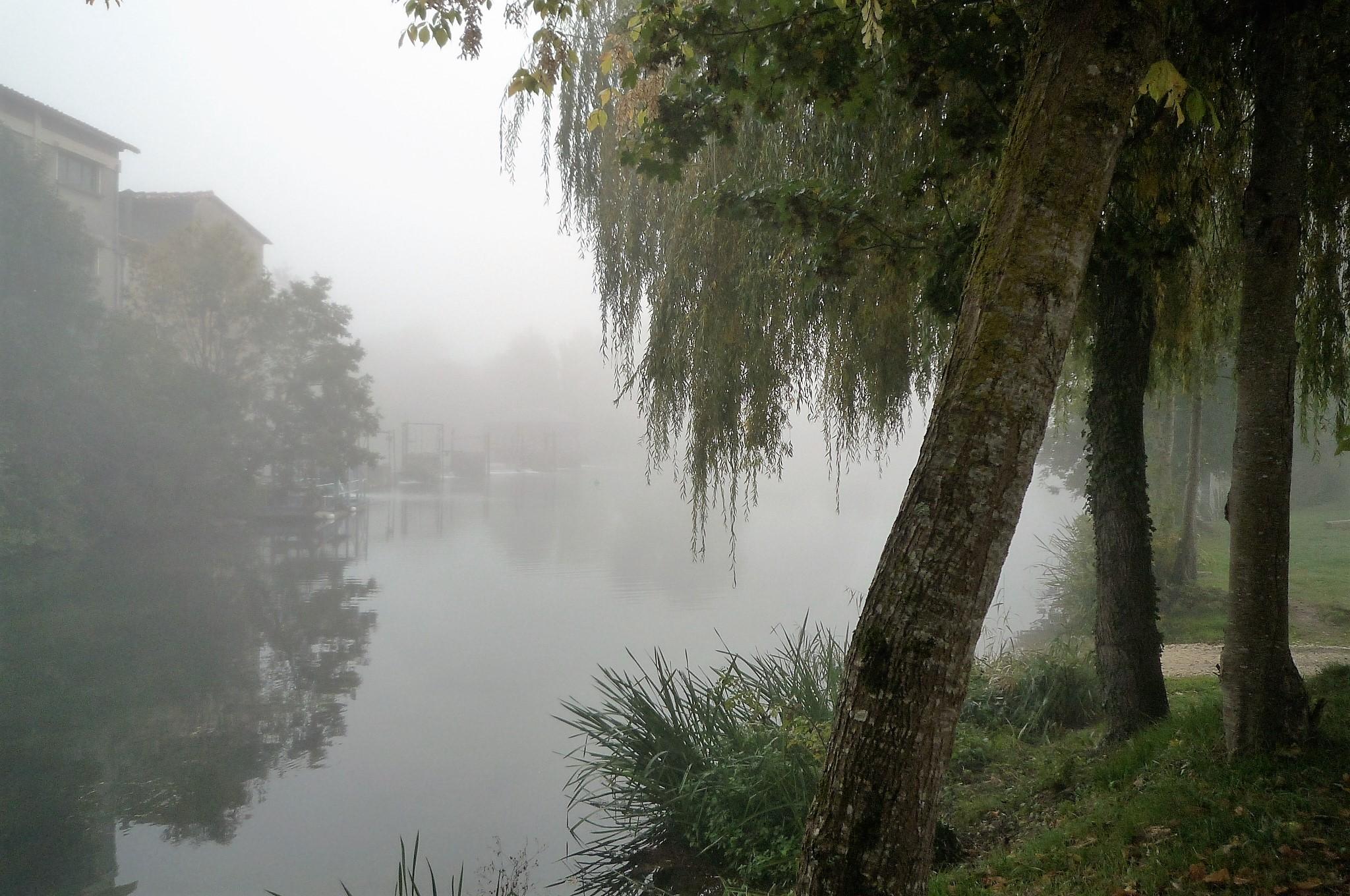 livingincognac-saint-simeux-2016-fog