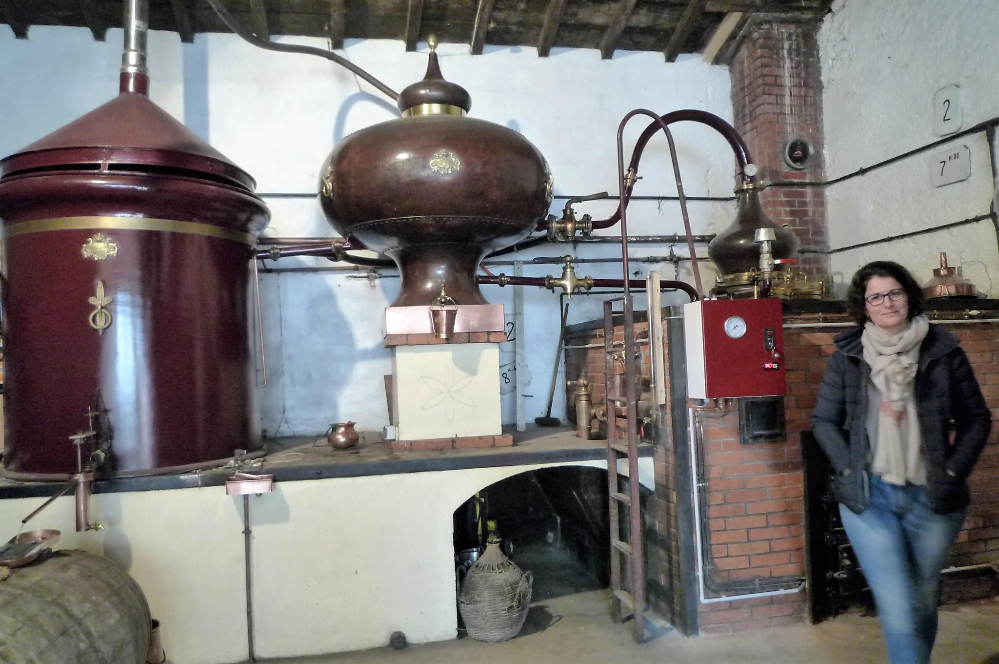 livingincognac2016 distillation guillon pinturaud line sauvant