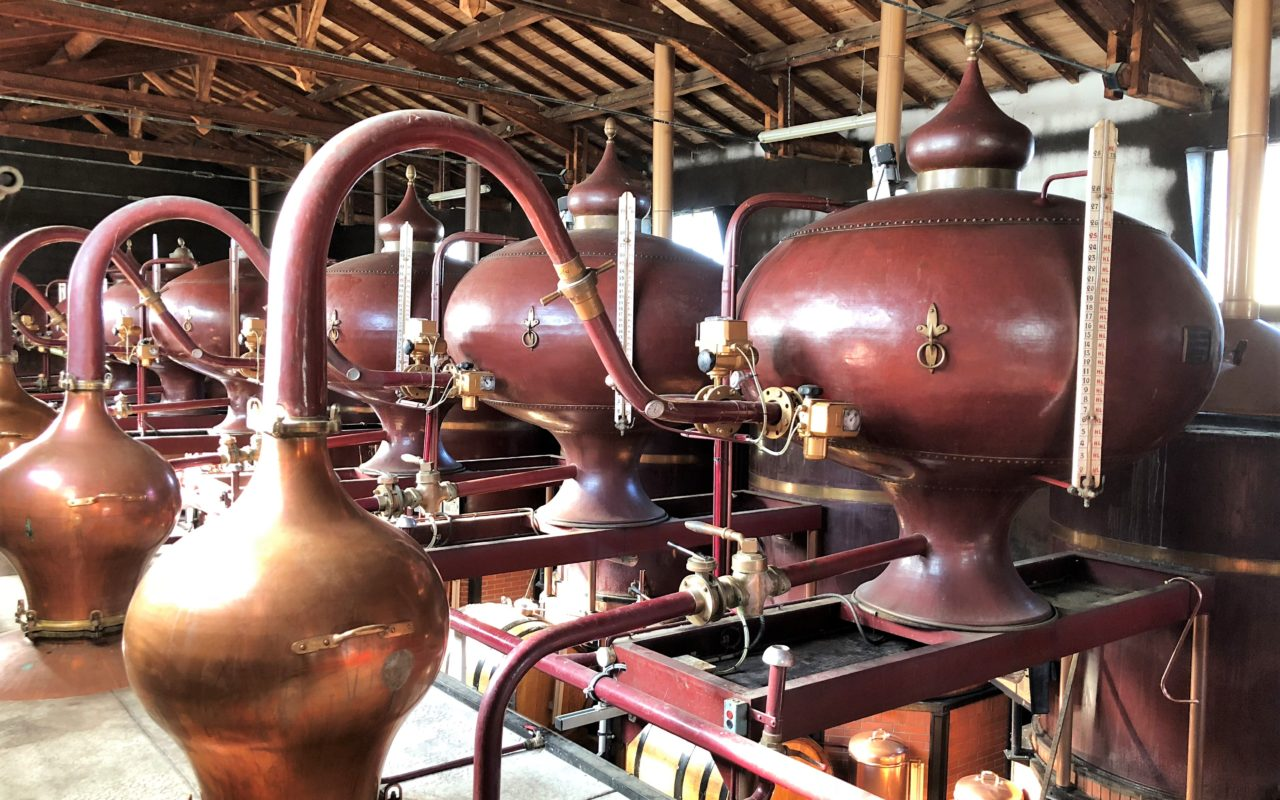 Livinincognac 2018 Distillation
