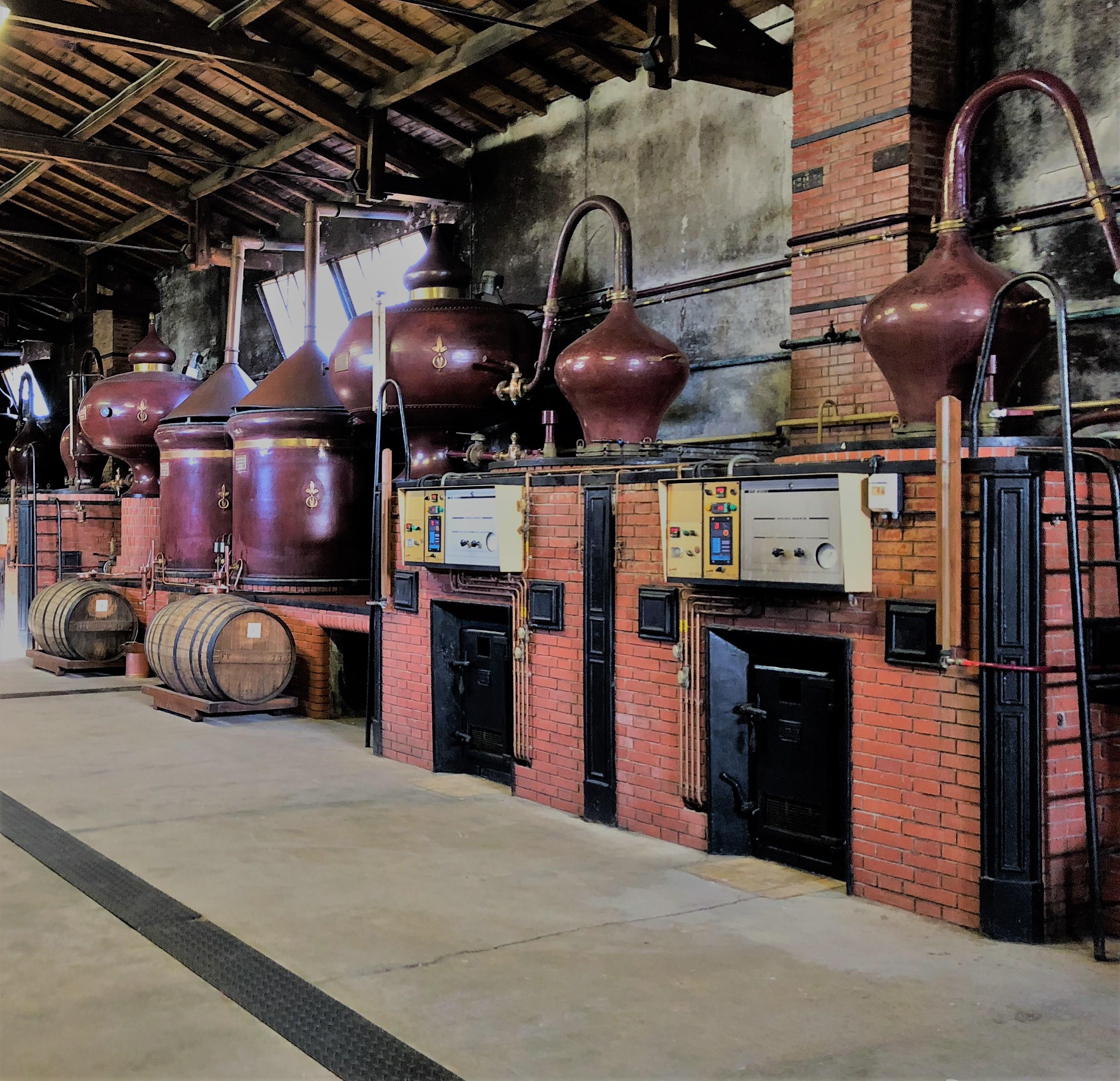 livingincognac - distillation