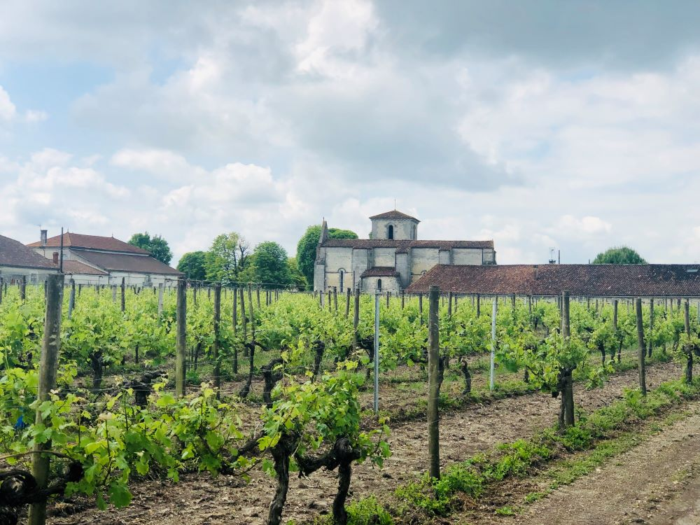 living-in-cognac-angeacchampagne