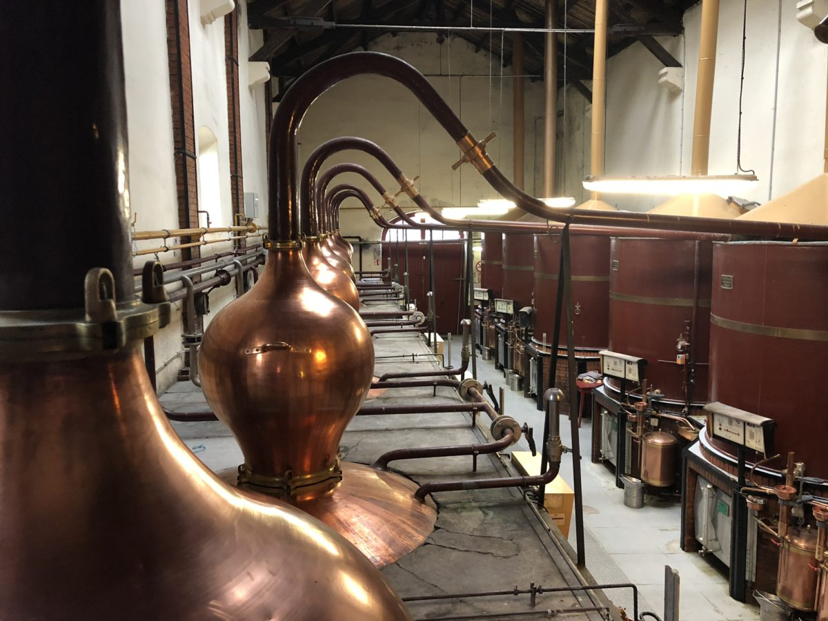 une distillerie de cognac