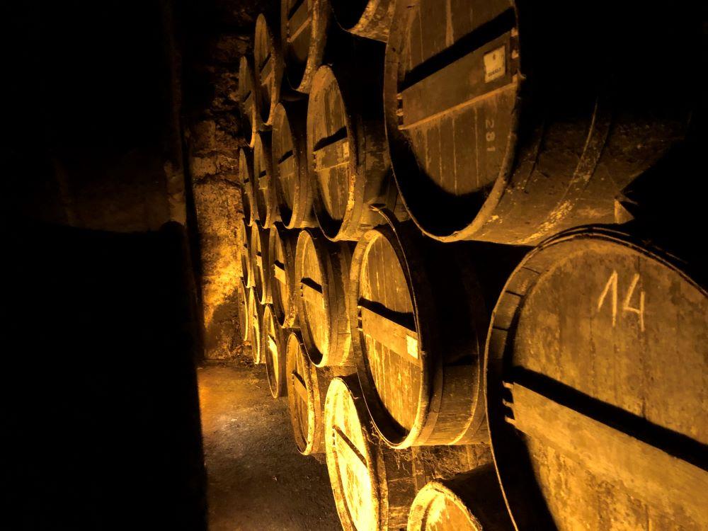les chais des cognacs baron otard