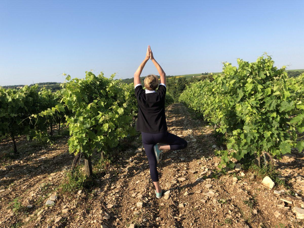 mon yoga dans les vignes de cognac