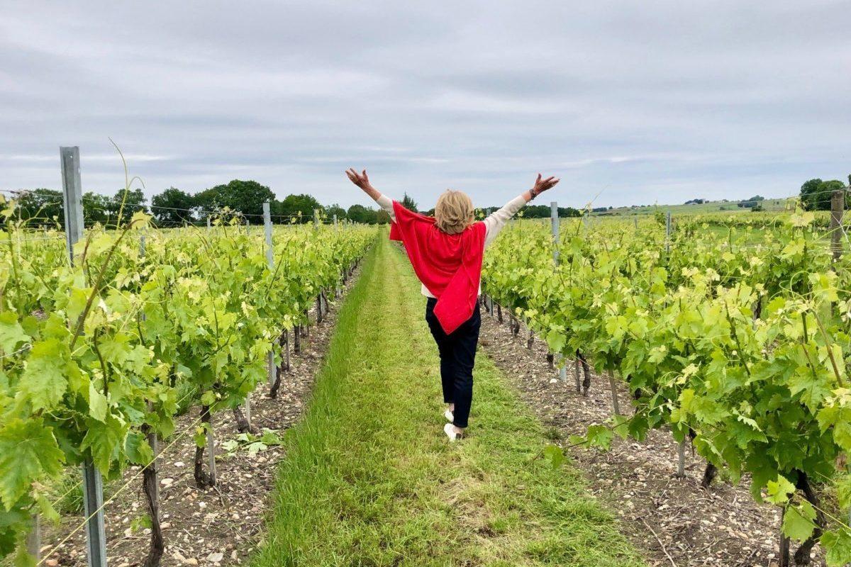 premier jour dans les vignes après le déconfinement