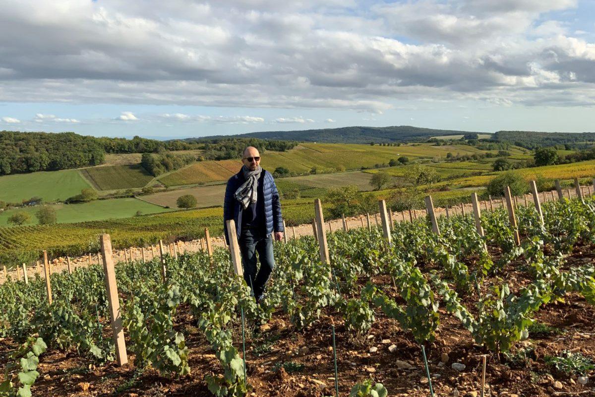 Philippe Guyonnet dans les nouvelles vignes plantées sur le clos de la Mollepierre